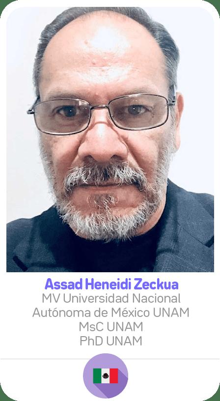 AssadHeneidi